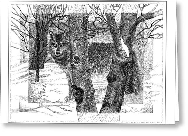 Pen And Ink Framed Prints Greeting Cards - Mexican Grey Wolf in winter Greeting Card by Jack Pumphrey