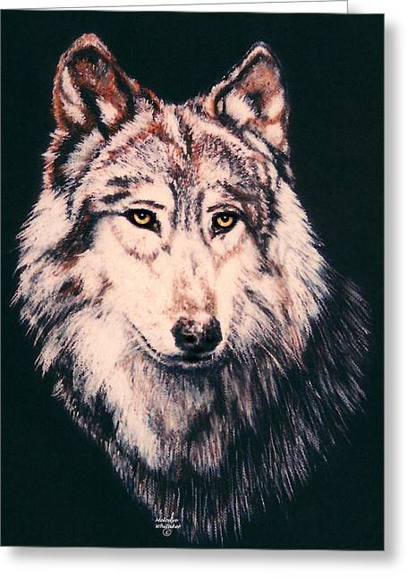Wolf Pastels Greeting Cards - Grey Wolf Greeting Card by Melodye Whitaker