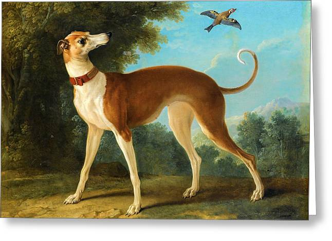 Greyhound Dog Greeting Cards - Greyhound in a landscape Greeting Card by Jean-Baptiste Oudry