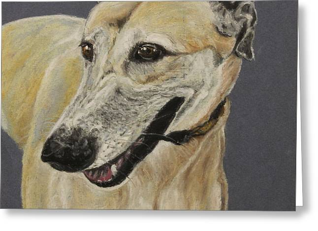 Competition Pastels Greeting Cards - Greyhound Greeting Card by Jeanne Fischer