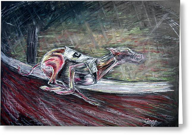 Greyhound Dog Pastels Greeting Cards - Greyhound Number Three Greeting Card by Tom Conway