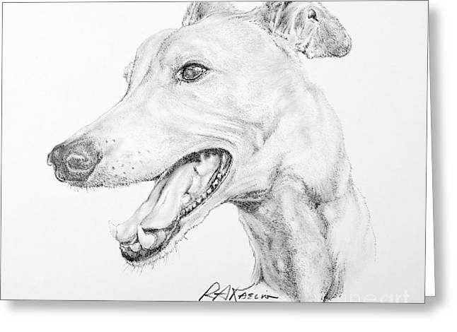 Pencil Drawings Of Pets Greeting Cards - Greyhound Greeting Card by Roy Kaelin