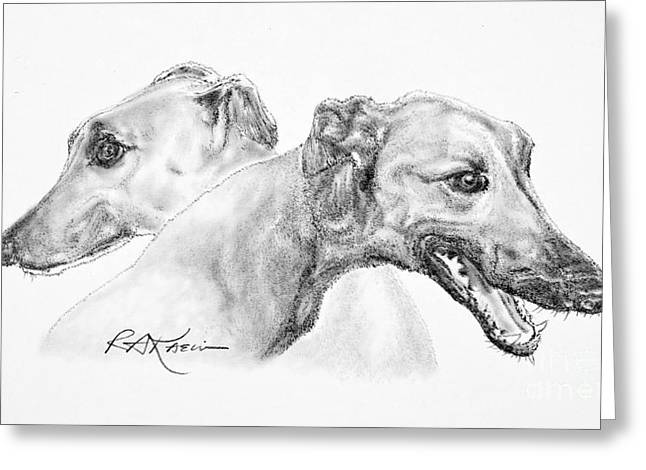 Pencil Drawings Of Pets Greeting Cards - Greyhounds for Two Greeting Card by Roy Kaelin