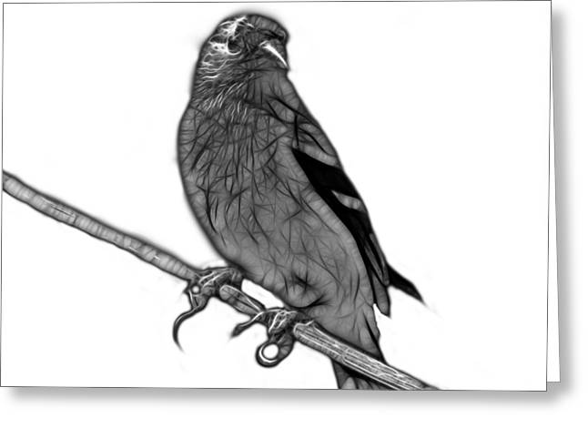 Goldfinch Digital Art Greeting Cards - Greyscale Lesser Goldfinch - 2235 F S M Greeting Card by James Ahn