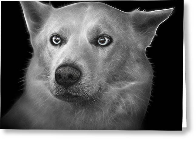 Recently Sold -  - Husky Greeting Cards - Greyscale Mila - Siberian Husky - 2103 - BB Greeting Card by James Ahn