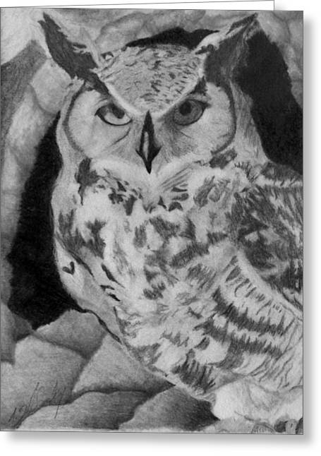 Wild Life Drawings Greeting Cards - Greyscale Owl Greeting Card by Tracie Ballensky