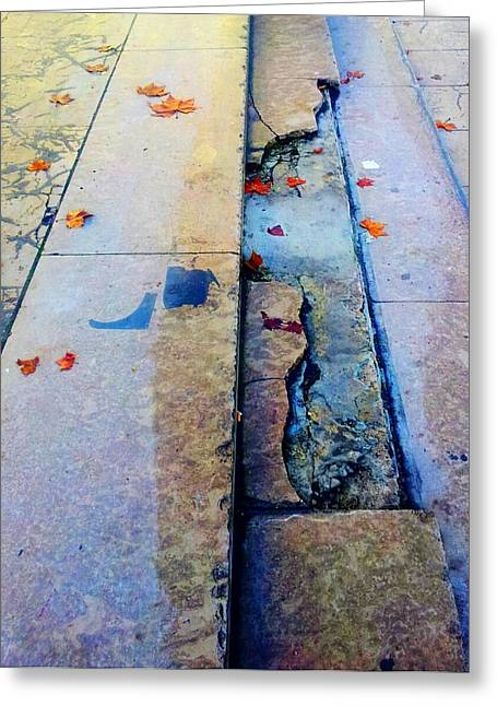 Crack In Concrete Greeting Cards - Grieta Greeting Card by Sandra Perez-Ramos