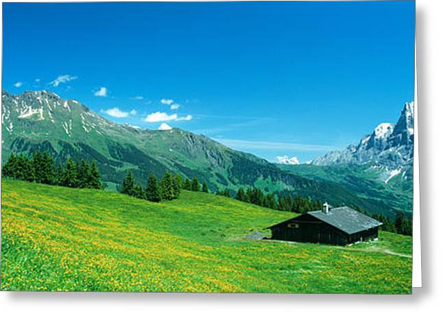 Grindelwald Switzerland Greeting Card by Panoramic Images