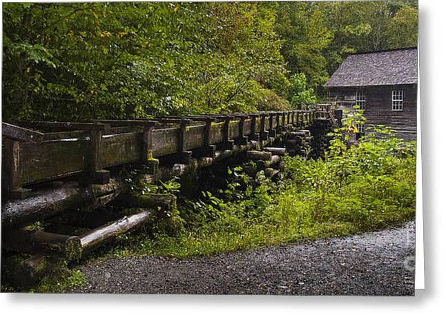 Grist Mill Greeting Cards - Grist Mill Greeting Card by Cindy Tiefenbrunn