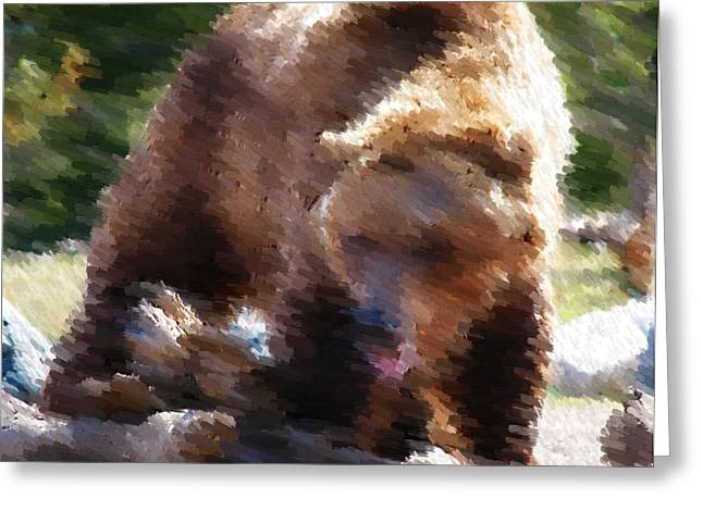 Wildlife Framed Prints Greeting Cards - Grizz Greeting Card by Kevin Bone