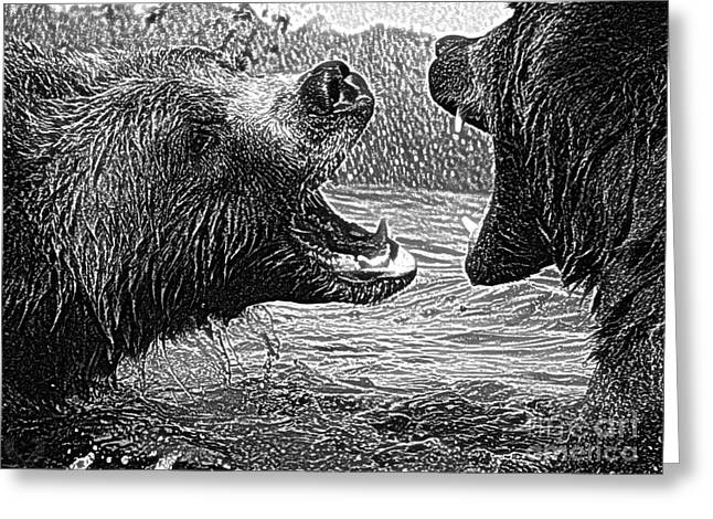Preditor Greeting Cards - Grizz Play L Bw Greeting Card by Dale Crum