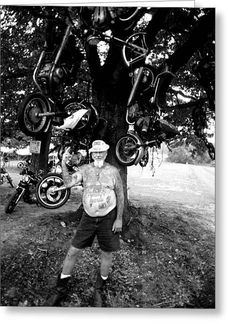 Harley Davidson Greeting Cards - GRIZZ Tree Greeting Card by Doug Barber