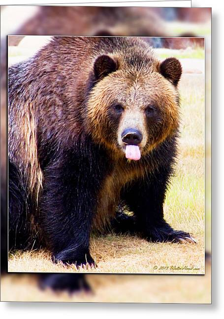 Memphis Grizzlies Digital Greeting Cards - Grizzly Bear 2 Greeting Card by Walter Herrit