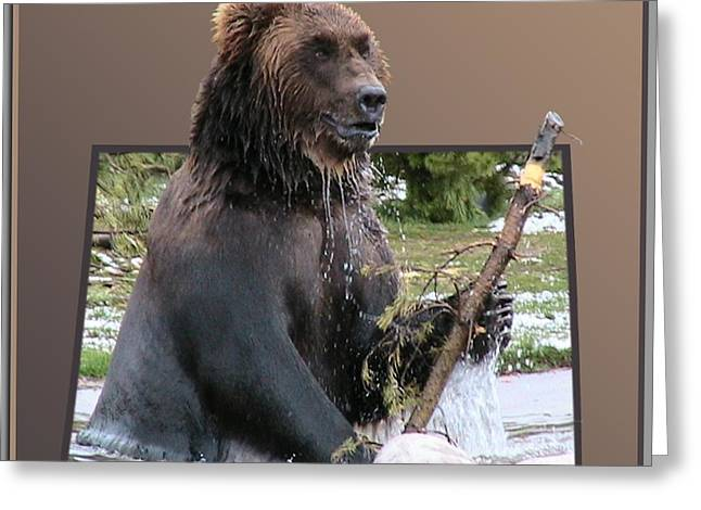 Grizzly Bear 6 Out Of Bounds Greeting Card by Thomas Woolworth
