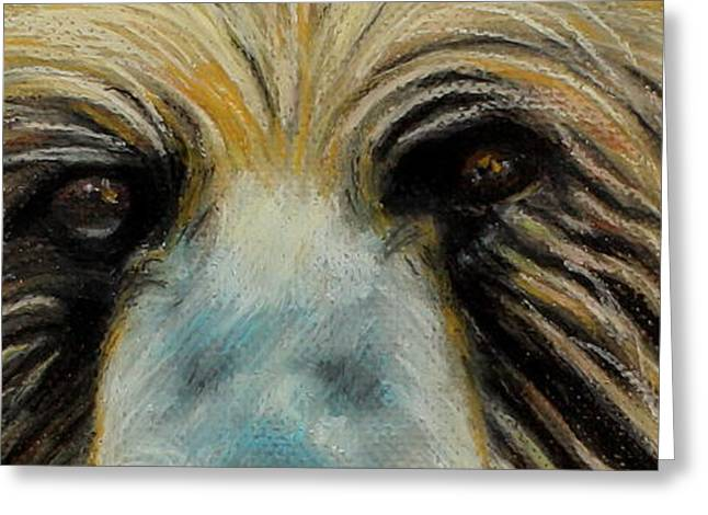 Expression Pastels Greeting Cards - Grizzly Eyes Greeting Card by Jeanne Fischer