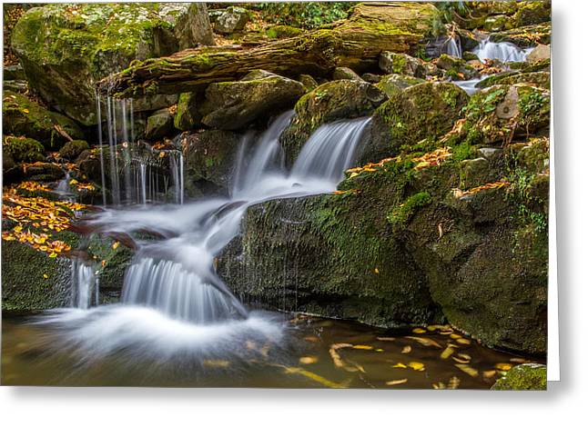Grotto Falls Great Smoky Mountains Tennessee Greeting Card by Pierre Leclerc Photography