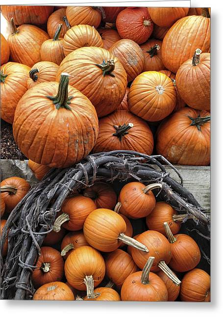 Harvest Bounty Greeting Cards - Group of farm fresh delicious pumpkins Greeting Card by Andy Gimino