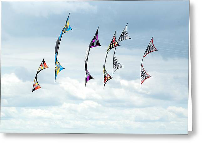 Stunt Flyer Greeting Cards - Group of Revolution kites at the Windscape Kite Fest Greeting Card by Rob Huntley