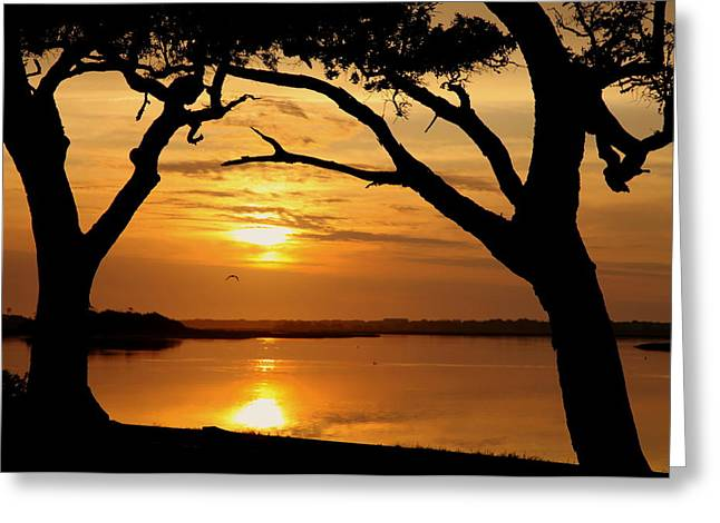 Seacoast Greeting Cards - Grow Old Beside Me Greeting Card by Karen Wiles