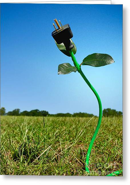Green Living Greeting Cards - Growing Green Energy Greeting Card by Amy Cicconi