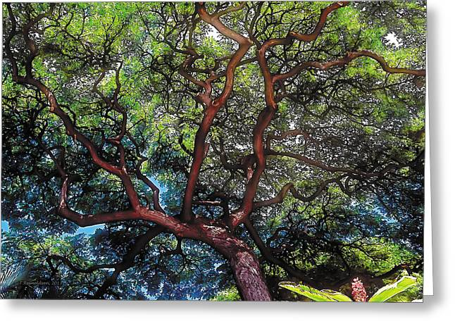 Tranquility Greeting Cards - Growth Greeting Card by Terry Reynoldson