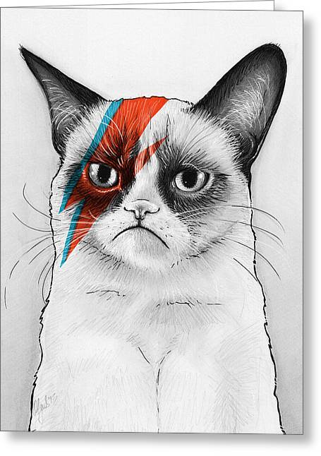 Funny Drawings Greeting Cards - Grumpy Cat as David Bowie Greeting Card by Olga Shvartsur