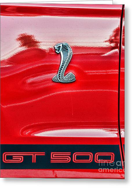 Steering Greeting Cards - GT 500 Mustang Greeting Card by Paul Ward