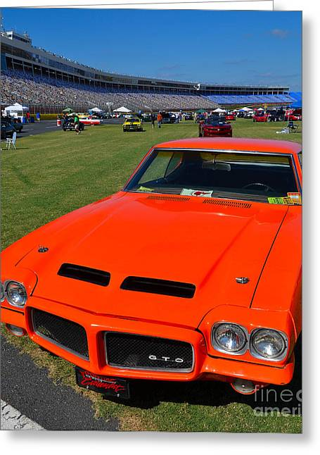 Gto At The Racetrack Greeting Card by Mark Spearman