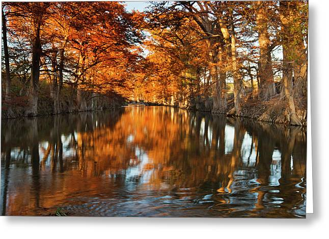 Guadalupe River, Texas Hill Country Greeting Card by Larry Ditto