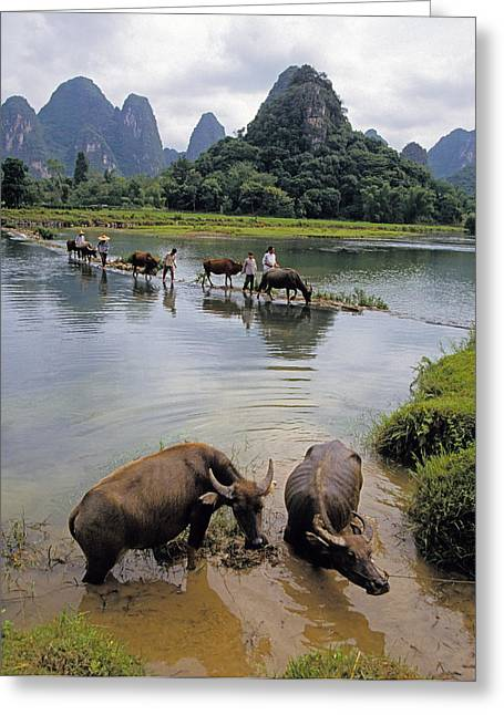 Chinese Peasant Greeting Cards - Guangxi crossing 3 Greeting Card by Dennis Cox ChinaStock