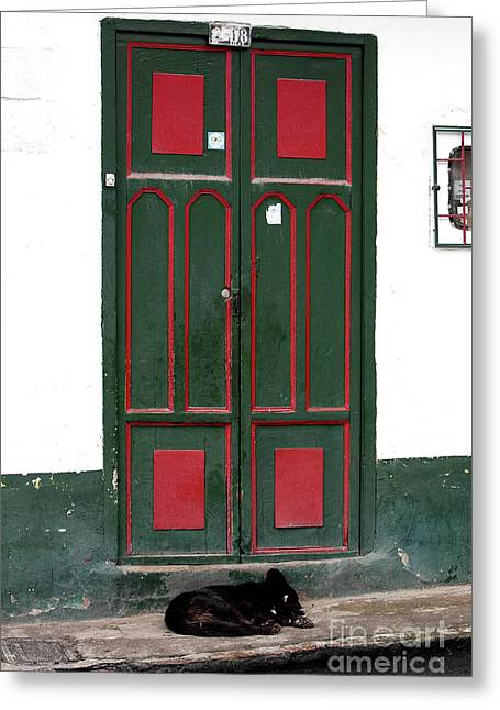 Guard Dog Greeting Cards - Guard Dog in Sopo Greeting Card by John Rizzuto