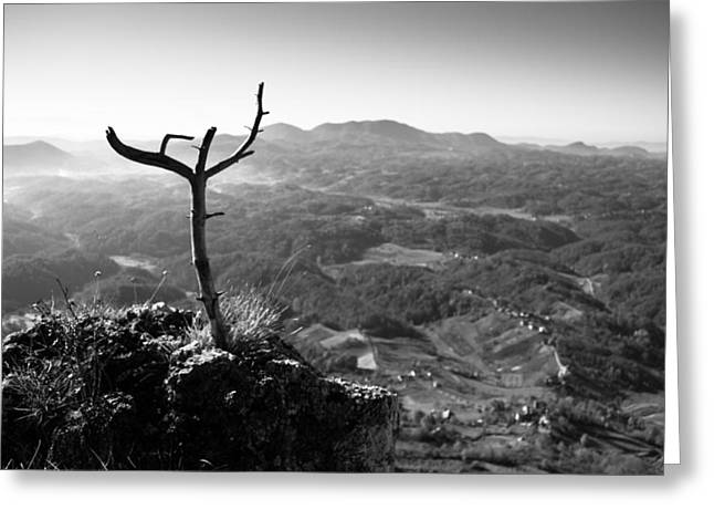 Mountain Valley Greeting Cards - Guardian Greeting Card by Davorin Mance