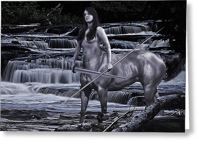 Sean Horse Greeting Cards - Guardian II Greeting Card by Sean Holmquist