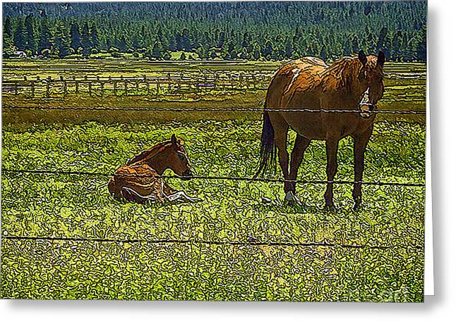 Pastureland Greeting Cards - Guardian Greeting Card by Nancy Marie Ricketts