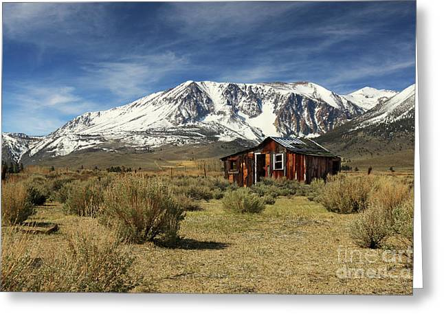 Mountain Cabin Greeting Cards - Guardian Of The Sierras Greeting Card by James Eddy