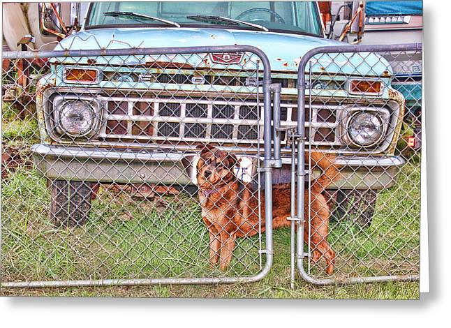 Guarding The Ford Greeting Card by Cathy Anderson