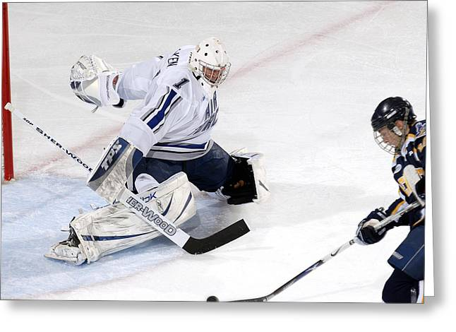 Hockey Net Greeting Cards - Guarding the Net Greeting Card by Mountain Dreams