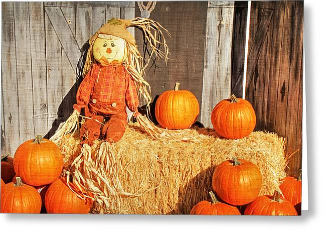 Pumpkins Greeting Cards - Guarding the Pumpkins Greeting Card by Donna Kennedy