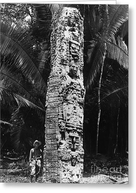 Morley Greeting Cards - GUATEMALA: QUIRIGUA, c1912 Greeting Card by Granger