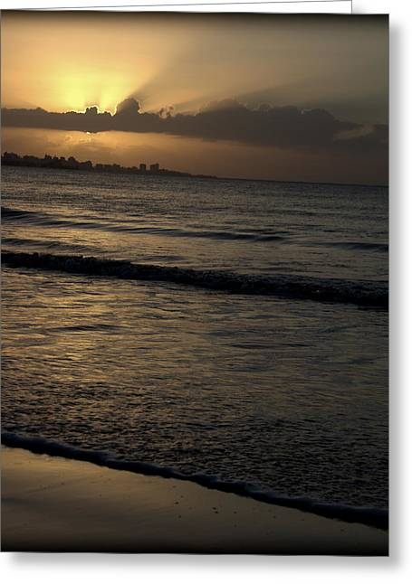 Surf City Greeting Cards - Guiding Light Greeting Card by Ed Smith