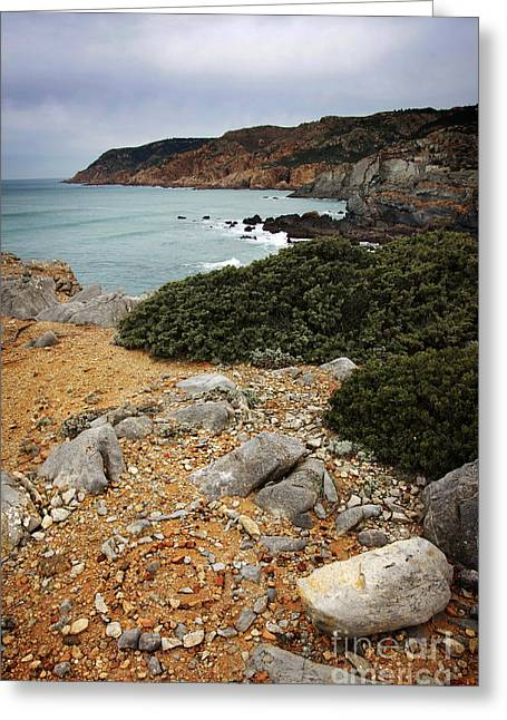 Atlantic Beaches Greeting Cards - Guincho Cliffs Greeting Card by Carlos Caetano
