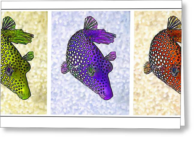 Puffer Greeting Cards - Guinea Fowl Puffer Fish Triptych Greeting Card by Bill Caldwell -        ABeautifulSky Photography