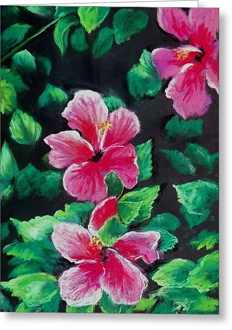 Florida Flowers Pastels Greeting Cards - Gulf Beauties Greeting Card by Vincent Mancuso