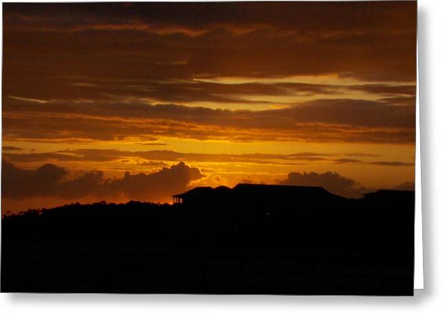 Storm Prints Digital Art Greeting Cards - Gulf Silhouette and Sunset Greeting Card by Sheri McLeroy