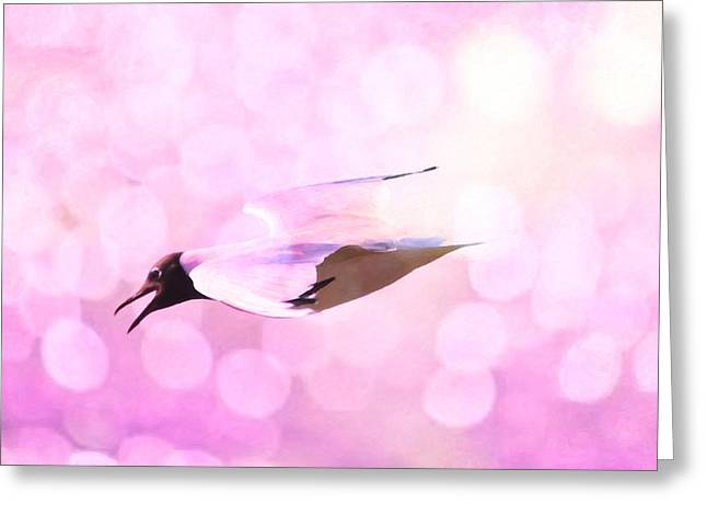Summer Scene Mixed Media Greeting Cards - Gull and nice bokhe Greeting Card by Toppart Sweden