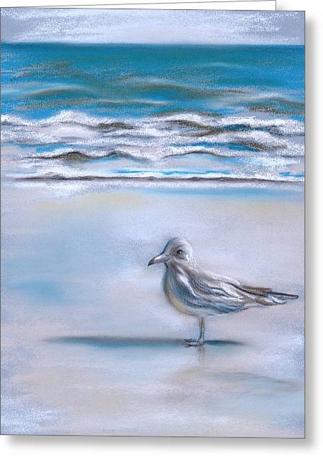 Gull On The Shore Greeting Card by MM Anderson