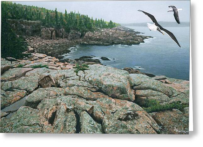 Fog Drawings Greeting Cards - Gulls at Monument Cove Greeting Card by Brent Ander