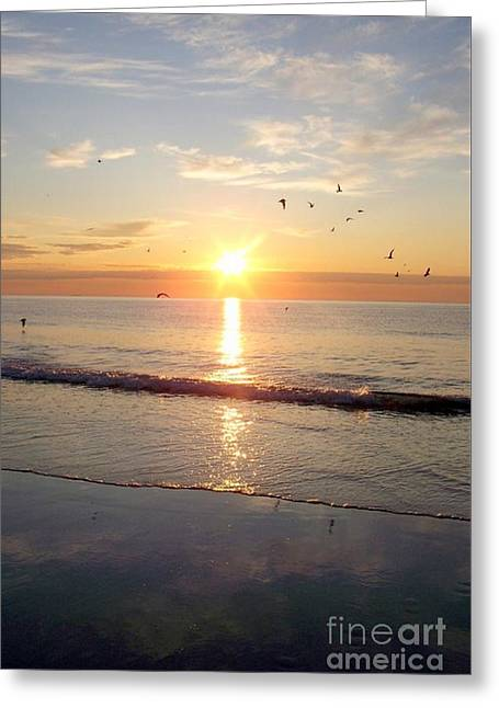 Gulls Dance In The Warmth Of The New Day Greeting Card by Eunice Miller