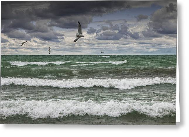 Sturgeon Greeting Cards - Gulls Flying over the Waves Greeting Card by Randall Nyhof