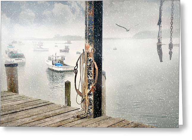 Maine Landscape Greeting Cards - Guls Eye Greeting Card by Diana Angstadt